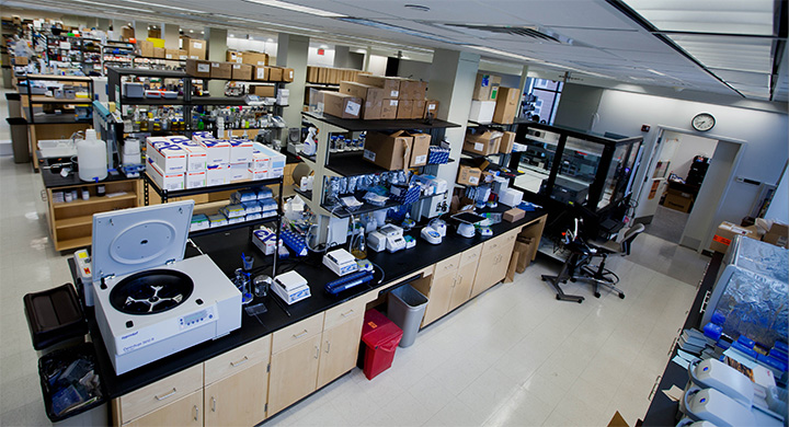 Interior of IGB lab